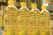 Palm oil,  Sunflower and Jatropha Oil for sale
